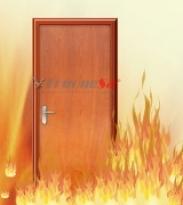 Cửa gỗ chống cháy 03