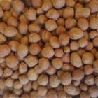 Bài III.6: FROOD - CÁCH SỬ DỤNG PHÂN BÓN