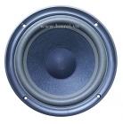 Bass 20 Bose