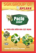 PACLO 20WP