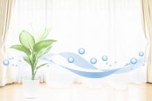 6 mẹo giúp làm sạch không khí ngôi nhà của bạn