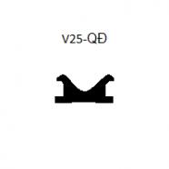 V25-QĐ