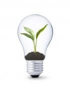 Đèn LED tiết kiệm điện- giải pháp trong chiếu sáng
