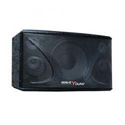 Loa Karaoke PS-802