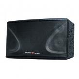 Loa Karaoke PS-801